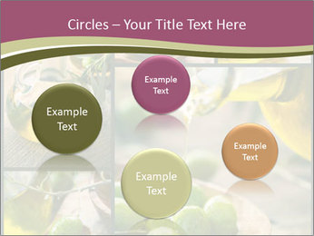 Olive harvest collage PowerPoint Template - Slide 77
