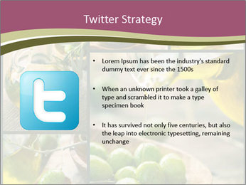 Olive harvest collage PowerPoint Template - Slide 9