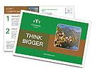 0000091419 Postcard Templates