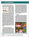 0000091422 Word Template - Page 3