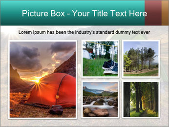 Camping in the wilderness PowerPoint Template - Slide 19