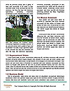 0000091423 Word Templates - Page 4
