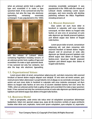 0000091425 Word Template - Page 4