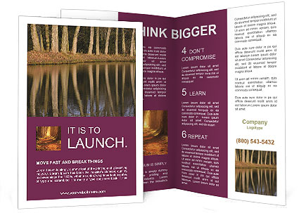 0000091427 Brochure Template