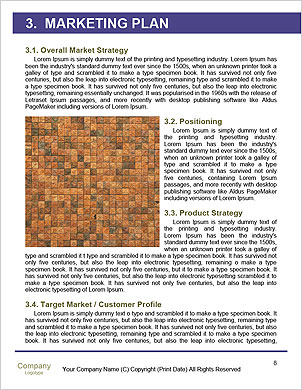 0000091429 Word Template - Page 8