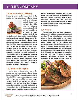 0000091430 Word Template - Page 3
