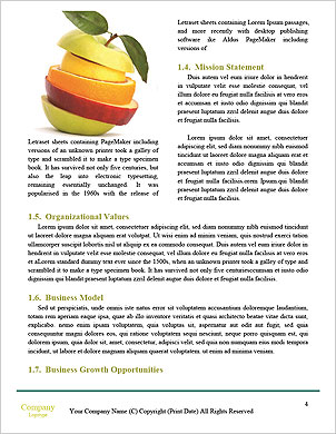 0000091434 Word Template - Page 4