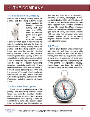 0000091437 Word Template - Page 3