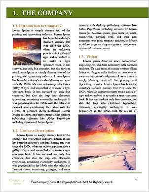 0000091441 Word Template - Page 3