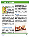 0000091444 Word Template - Page 3