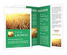 0000091445 Brochure Template