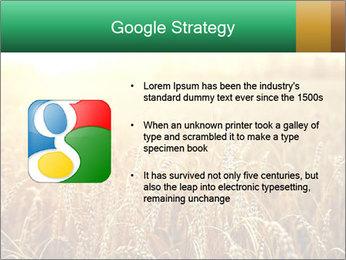 Ripening ears PowerPoint Templates - Slide 10