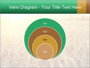 Ripening ears PowerPoint Templates - Slide 34