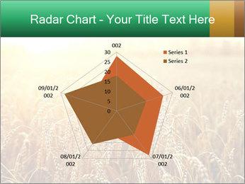 Ripening ears PowerPoint Templates - Slide 51