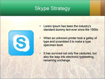 Ripening ears PowerPoint Templates - Slide 8