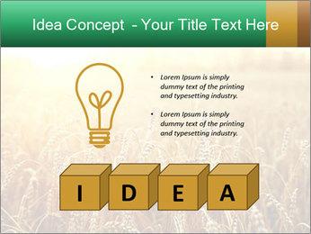 Ripening ears PowerPoint Templates - Slide 80