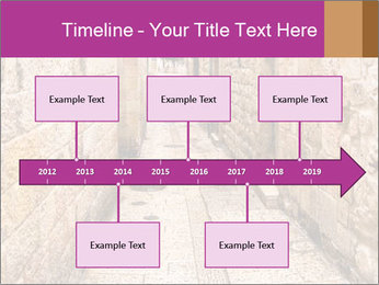 Ancient Alley PowerPoint Templates - Slide 28