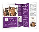 0000091449 Brochure Templates