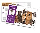 0000091449 Postcard Templates