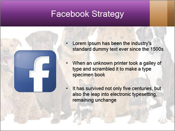 Group of twelve dogs PowerPoint Template - Slide 6