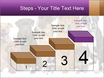 Group of twelve dogs PowerPoint Templates - Slide 64