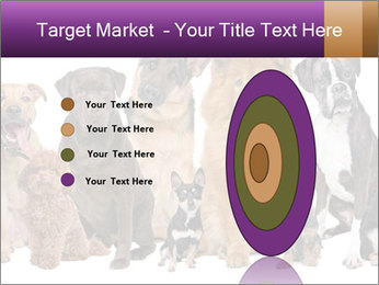 Group of twelve dogs PowerPoint Template - Slide 84