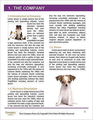 0000091449 Word Template - Page 3