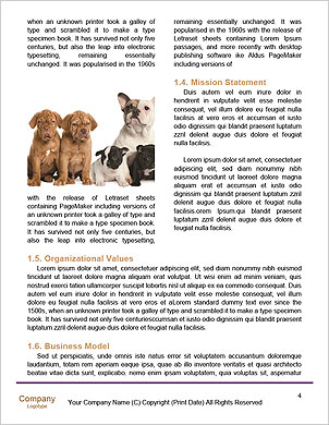 0000091449 Word Template - Page 4