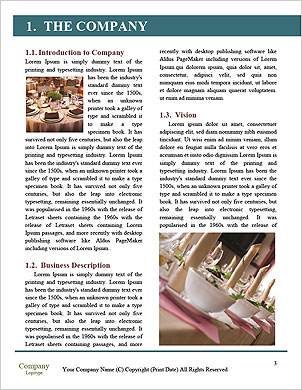 0000091450 Word Template - Page 3