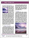 0000091455 Word Template - Page 3
