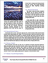 0000091455 Word Templates - Page 4