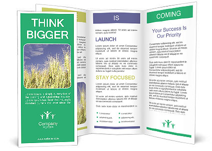0000091458 Brochure Template