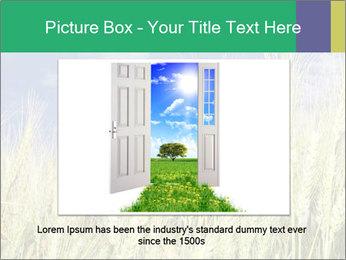 Wheat ears PowerPoint Template - Slide 16