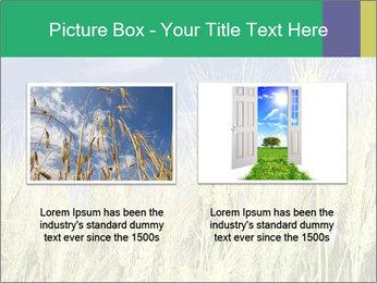 Wheat ears PowerPoint Template - Slide 18