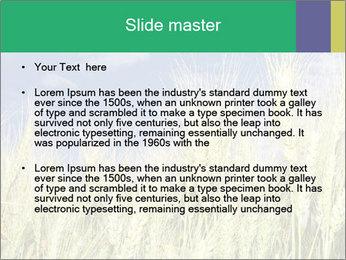 Wheat ears PowerPoint Template - Slide 2