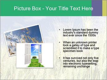 Wheat ears PowerPoint Template - Slide 20