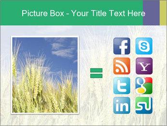 Wheat ears PowerPoint Template - Slide 21