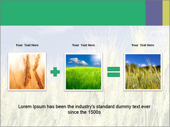 Wheat ears PowerPoint Template - Slide 22