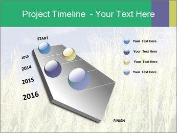 Wheat ears PowerPoint Template - Slide 26