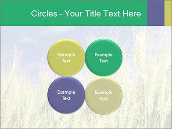 Wheat ears PowerPoint Template - Slide 38