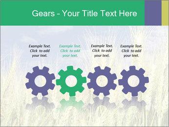 Wheat ears PowerPoint Template - Slide 48