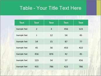 Wheat ears PowerPoint Template - Slide 55