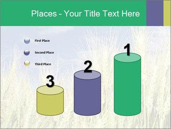 Wheat ears PowerPoint Template - Slide 65