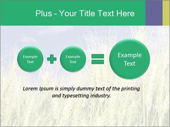 Wheat ears PowerPoint Template - Slide 75