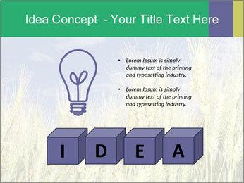 Wheat ears PowerPoint Template - Slide 80