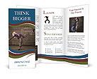 0000091461 Brochure Template