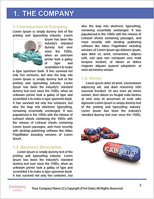 0000091462 Word Template - Page 3