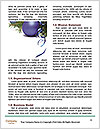 0000091464 Word Template - Page 4