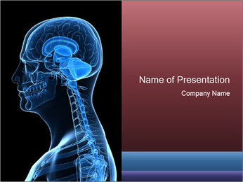 Human brain PowerPoint Template - Slide 1