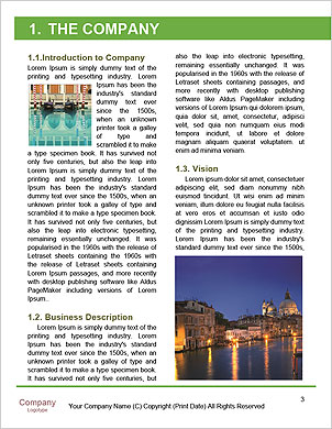 0000091470 Word Template - Page 3